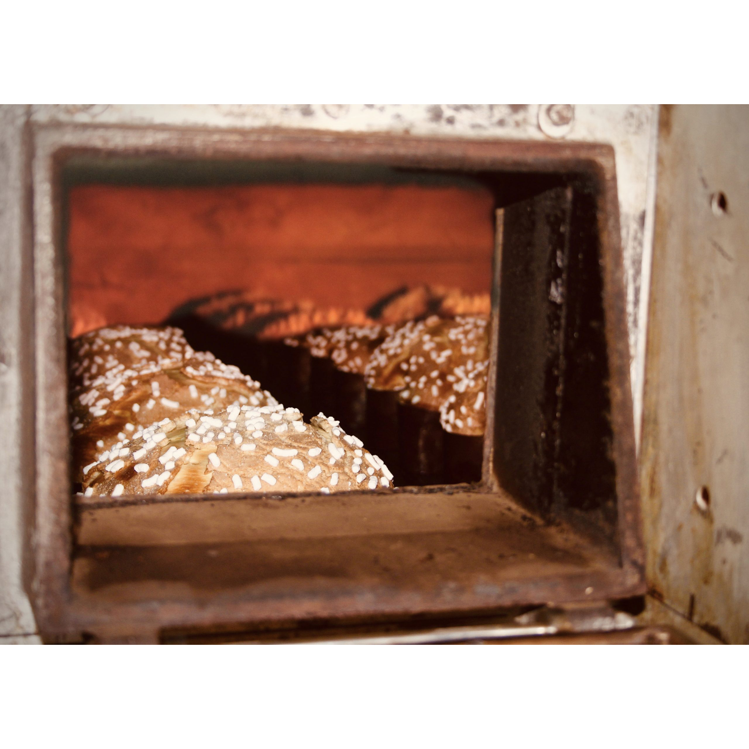 Colomba-1-scaled